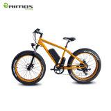 36V 250W fetter Gummireifen-Strand-elektrisches Fahrrad mit Panasonic-Batterie