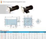 De verticale Vierkante Permanente Motor van de Magneet gelijkstroom
