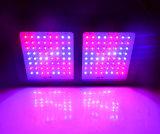 UV 빨간 파란 백색 LED는 가벼운 고성능 600W를 증가한다