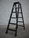 De Ladder van de glasvezel