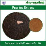 Polifenoli naturali dell'estratto del tè Unità di elaborazione-Erh