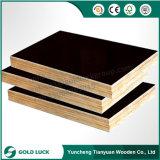 A madeira compensada marinha de barato 18mm Brown cobre 4X8 para o molde concreto