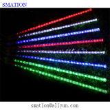 싼 백색 건전지에 의하여 운영하는 LED 장식적인 옥외 끈 밧줄 크리스마스 별 빛
