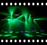Disco Light del LED 8*10W RGBW Spider Stage
