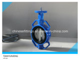 DIN Wafer Soft Seal PTFE LinedかSeated Butterfly Valve