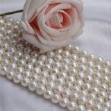 円形のZhujiによって培養される自然な淡水の真珠のビードの価格を離れて9-10mm