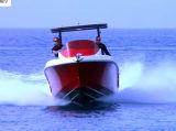 barco de pesca da velocidade da fibra de vidro de 25FT para a venda