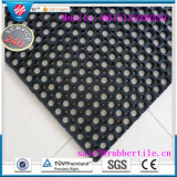 Grass Grid Playground Lawn Grating Rubber Hollow Mat