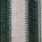 خضراء ولون بيضاء من [هدب] ظل شبكة لأنّ [ويندوو شد] (صاحب مصنع)