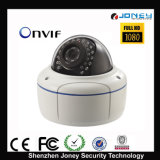 IP Camera do CCTV Outdoor IP66 2 Megapixel 1080P Dome da rede