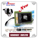 Digital Portable Vet Ultrasound Device (BW570V) mit Recharegable Battery