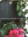 黒いPPによって編まれる沈泥の塀との中国90GSMの緑