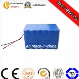 Li Polymer batterie Lithium-Ion Batterie LiFePO4 Battery Pack