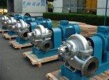 Edelstahl-doppelte Absaugung Cenrifugal Wasser-Pumpe