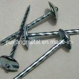 Ongles principaux de toiture de parapluie (UN-78)