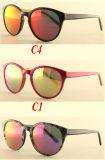 Personalizou seus próprios óculos de sol de Eyewear do gato do logotipo