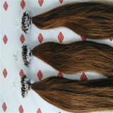 Выдвижения волос кольца самого лучшего качества микро- с человеческими волосами 100%