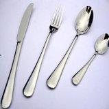 Insieme dell'articolo da cucina degli articoli per la tavola della forcella dell'acciaio inossidabile