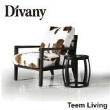 Divany incoraggia il Recliner del sofà/sofà di cuoio D-16 dell'ufficio