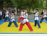 Esteras profesionales de Interlcoking de las esteras del judo de las esteras del karate de las esteras de Taekwondo