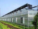 Serra del PC per agricoltura moderna