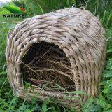 Alta calidad Hot Sale Pet Cage para el jardín