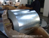 Oiled Cold Rolled Steel Coil/Plate/Sheet