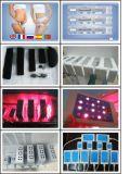 Máquina aprobada 2014 del laser de Lipo del precio de fábrica del CE