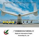 De goedkope Snelle Directe Vracht van de Lucht van de Dienst van de Logistiek van de Vracht Verschepende van China aan wereldwijd