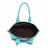 터키석 쉘 모양 형식 여자 운반물 핸드백 (MBNO040004)