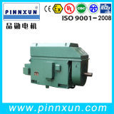 Wound grande Rotor Motor para Cement Mill