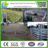 Longeron ovale du panneau 6 portatifs de yard - panneaux de cheval de yards de bétail