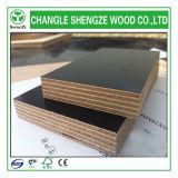 Contre-plaqué Shuttering de noyau de première classe d'eucalyptus de Dynea 21mm