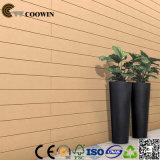 Paneling стены изготовления WPC Qingdao малой используемый хатой