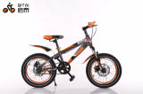 12inch Walking Kids Bicycle / Baby Bike / Children Bike / Children Bicicletas / Balance Bike