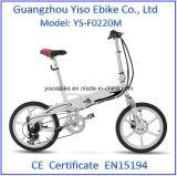 ブラシレスモーターを搭載するセリウムの承認2の車輪の電気自転車