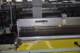 Dpp165t-31W weißes Einzelheizfaden-Polyester-Bildschirm-Drucken-Ineinander greifen