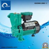 Elektrische selbstansaugende Zusatzpumpe des wasser-1awzb750kw
