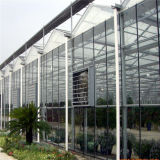 Da fábrica estufa Eco-Sightseeing da qualidade diretamente/venda quente Sunhouse