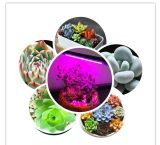 5W СИД растут света с струбциной весны для парника и Hydroponic