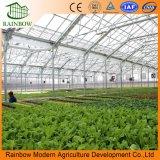 Hydroponic 시스템을%s 가진 농업 PC 장 온실 프로젝트