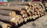 Schiacciamento di legno di vendita calda 2016 che fa la strumentazione della segatura
