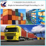 Frete de mar de transporte por caminhão Guangzhou do LTL da carga marítima internacional dos transitárioes, China a no mundo inteiro