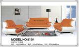Sofa à haute densité de cuir de combinaison pour les meubles de salle de séjour (819)