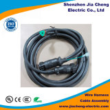 Verriegelungs-schraubenartige Draht-Verdrahtung mit Kabel des Verbinder-M12