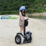 Un auto dei due carrai che equilibra il motorino diritto elettrico della rotella elettrica del motorino 2