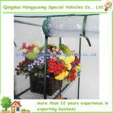 温室の屋外のホーム庭のコンパクトの花の歩行