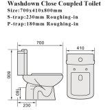 透かしの近い腰掛けの浴室のシートの陶磁器の洗面所(3882)