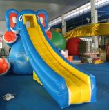 Agua Park con Inflatable Slide