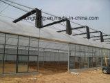 농업 가장 싼 중국 XL, 상업적인 플라스틱 온실